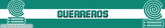 Guerreros COBACH