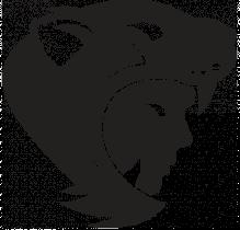 Guerreros Jaguar